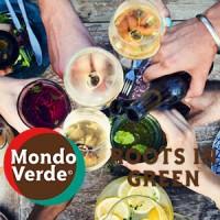 Geannuleerd: Business Borrel aangeboden door Mondo Verde